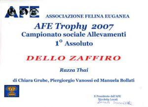 Afe Trofy 2007