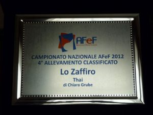campionato allevamento afef 2012
