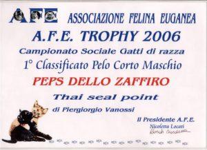 peps targa 2006